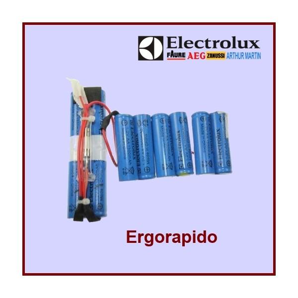 Kit complet batterie pour ergorapido 4055132304 pour - Batterie pour aspirateur electrolux ...