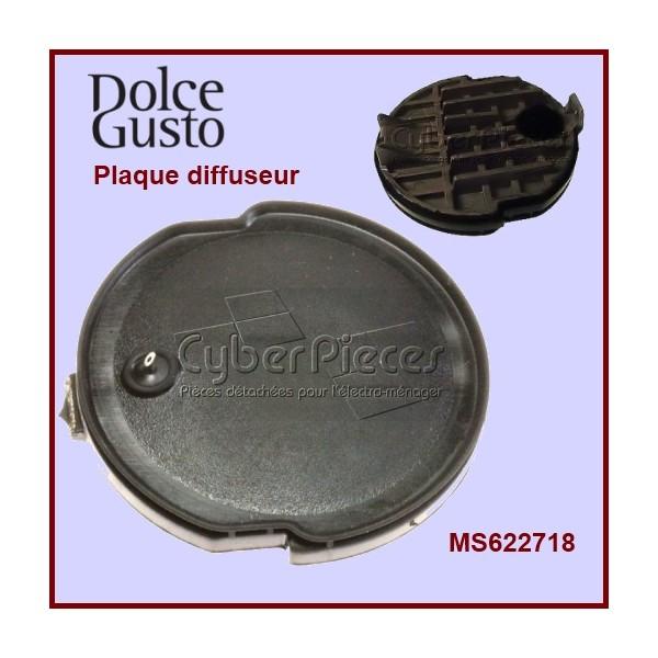 Plaque Percuteur + Joint MS-622718