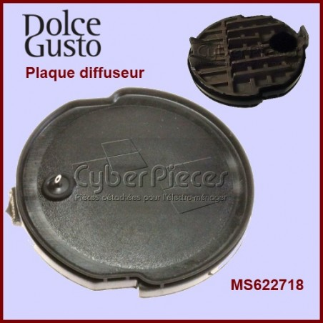 Plaque Percuteur + Joint MS-622718