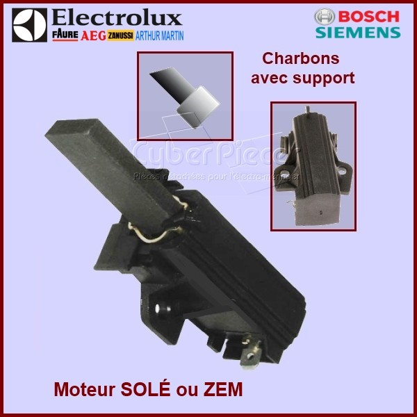 Kit 2 Charbons 50265481007 L1-10