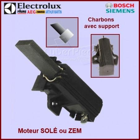 Charbons moteur avec support 32x12,5x5mm L1-10