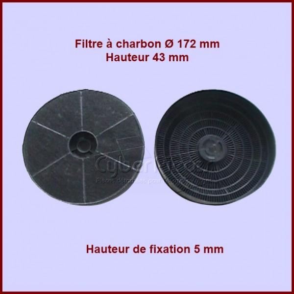 Filtre à charbon Type OFD2