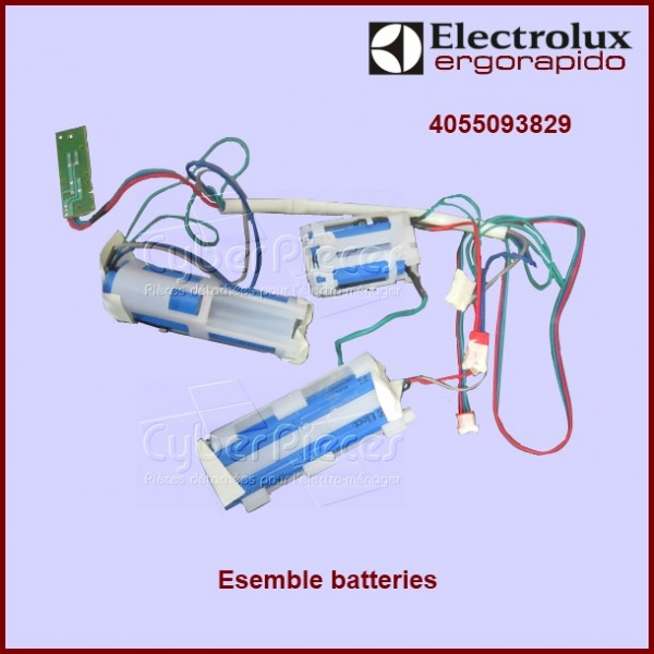 Ensemble de batteries d'aspirateur Electrolux 4055093829