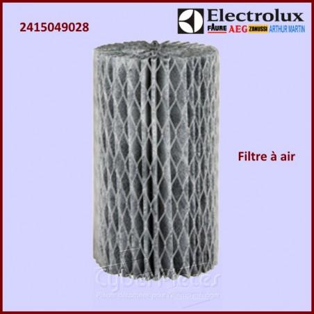 Filtre à air Electrolux 2415049028