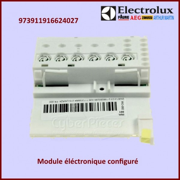 Module configuré Electrolux 973911916624027