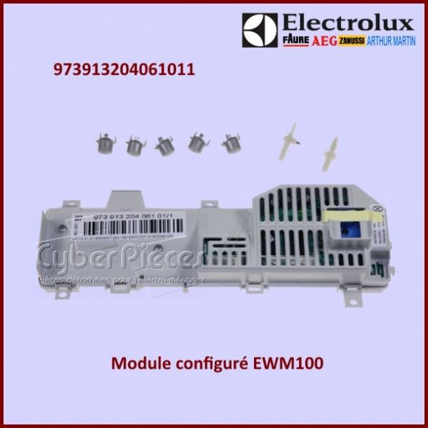 Module Electronique configuré Electrolux 973913204061011
