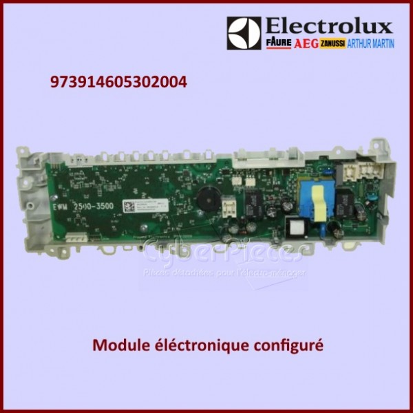 Module configuré Electrolux 973914605302004