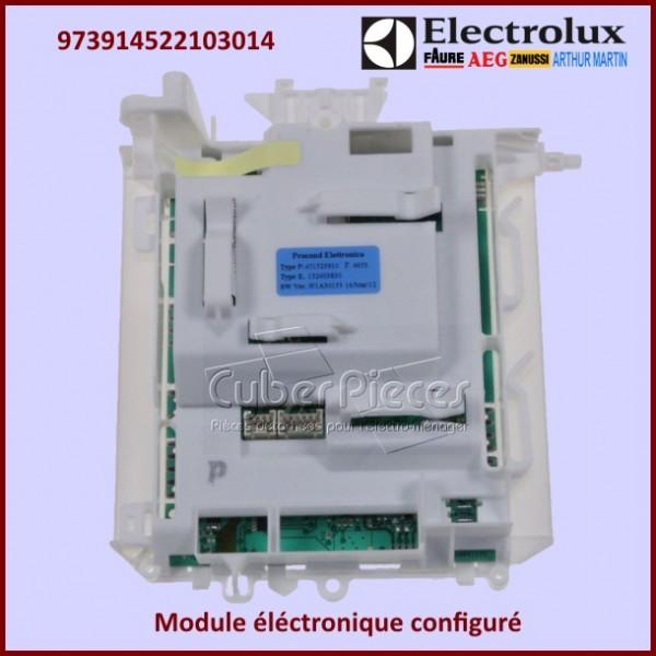 Module configuré Electrolux 973914522103014