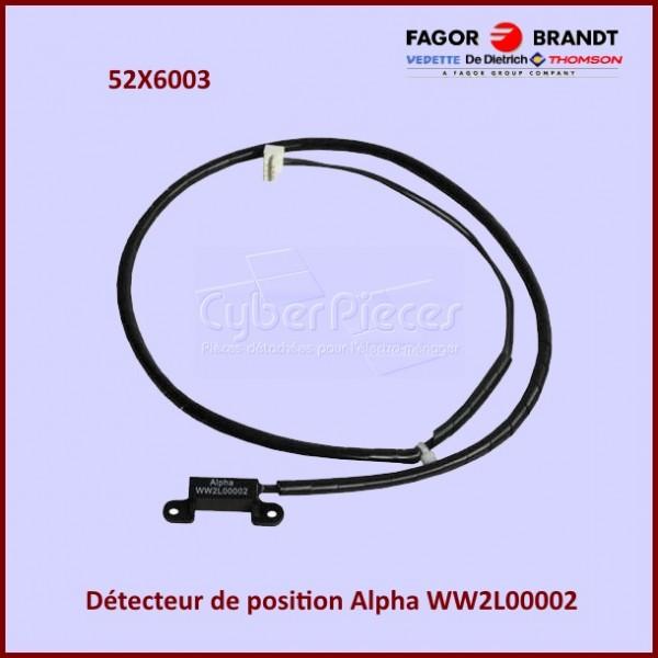 Détecteur de Positions Alpha 52X6003