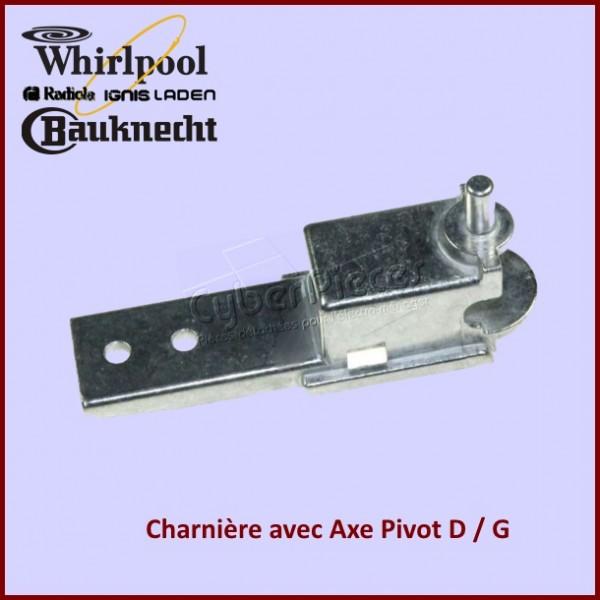 Charnière Inferieure avec Axe Pivot 481010372678