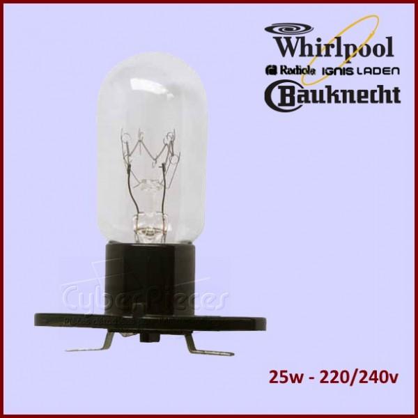 Ampoule Micro-onde T170 481213488071