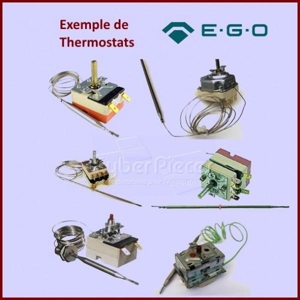 Liste des des thermostats EGO disponible