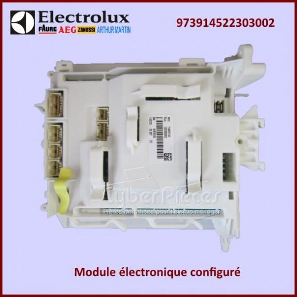 Module électronique configuré Electrolux 973914522303002
