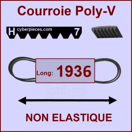 Courroie 1936 H7 - non élastique