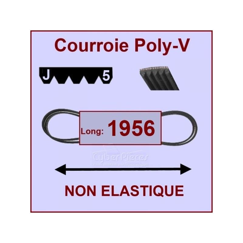 Courroie 1956 J5 non élastique