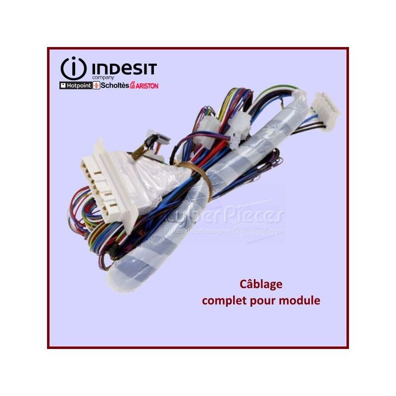 Câblage complet pour module Indesit C00279001