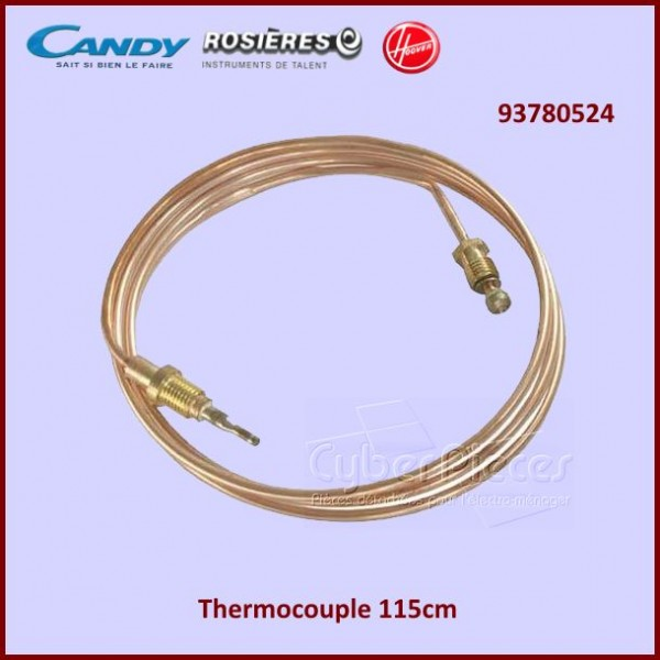 Thermocouple 115cm 93780524