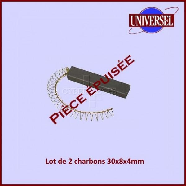 Charbon moteur 30x8x4mm***Pièce épuisée***