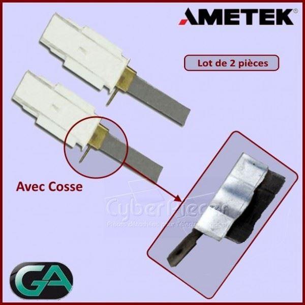 Charbon avec support AMETEK / L1-14