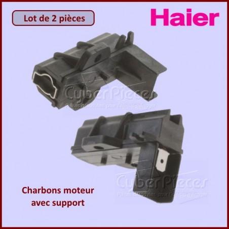 Charbon moteur avec support 32x12x5mm ProlineL1-13