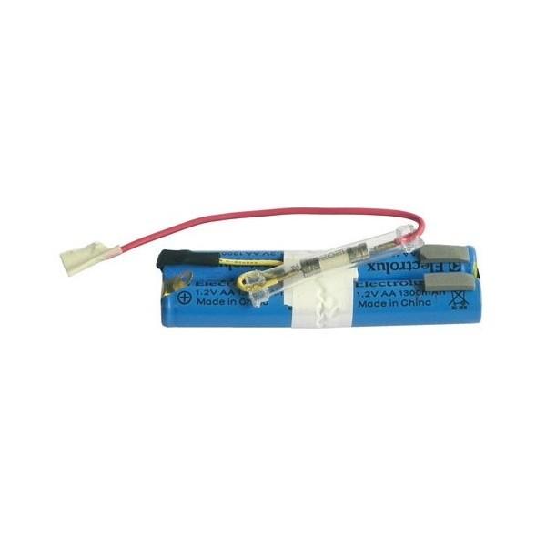 Batterie Rechargeable + Fusible 50297082005