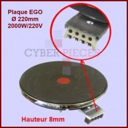 Foyer fonte 2000w/220v -...
