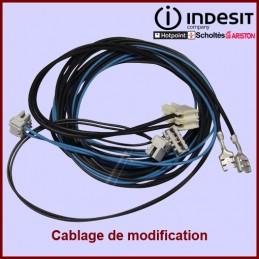 Câblage Module Electrovanne Indesit C00141769 CYB-059251