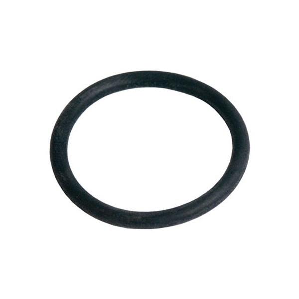 Joint torique de pompe de vidange Brandt  31X8354