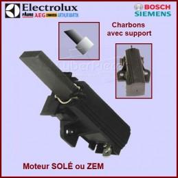 Charbons moteur avec support 32x12,5x5mm CYB-008648