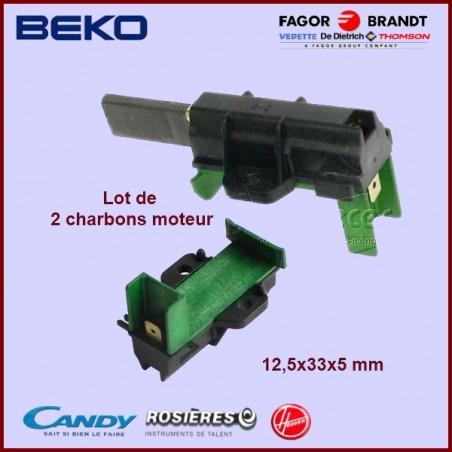 Charbon moteur avec support 33x12,5x5mm / L1-7