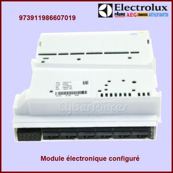 Module EDW150 configuré Electrolux 973911986607019