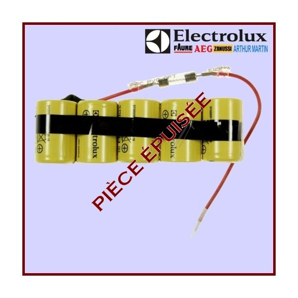 Batterie Rechargeable + Fusible 4055019105 Ergorapido