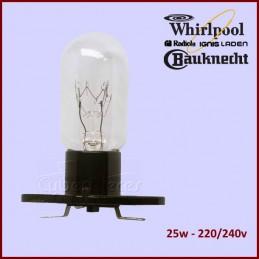 Ampoule Micro-onde T170...