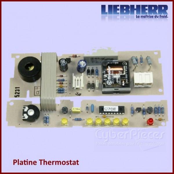 Module Electronique 6113632