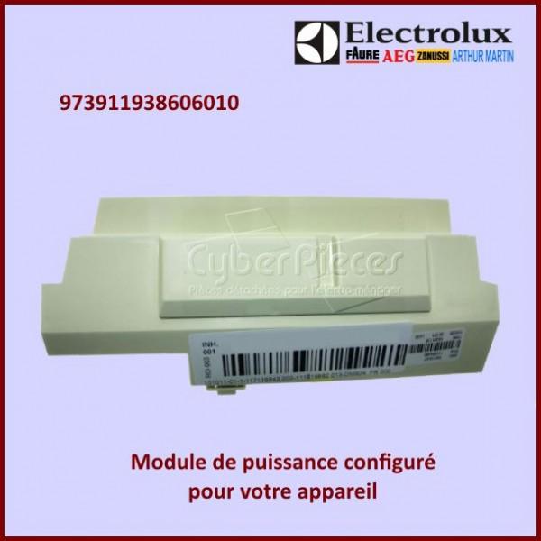 Module électronique configuré Electrolux 973911938606010