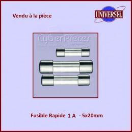 Fusible 1A Rapide 5x20mm en...