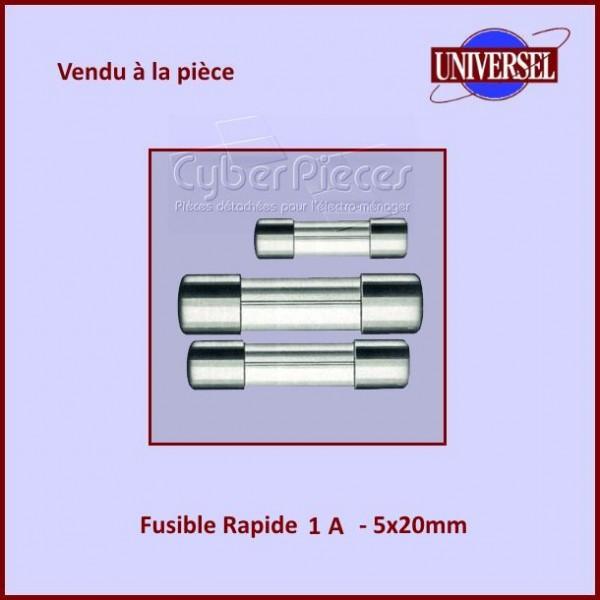 Fusible 1A Rapide 5x20mm en verre