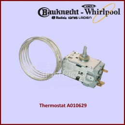 Thermostat A010629...