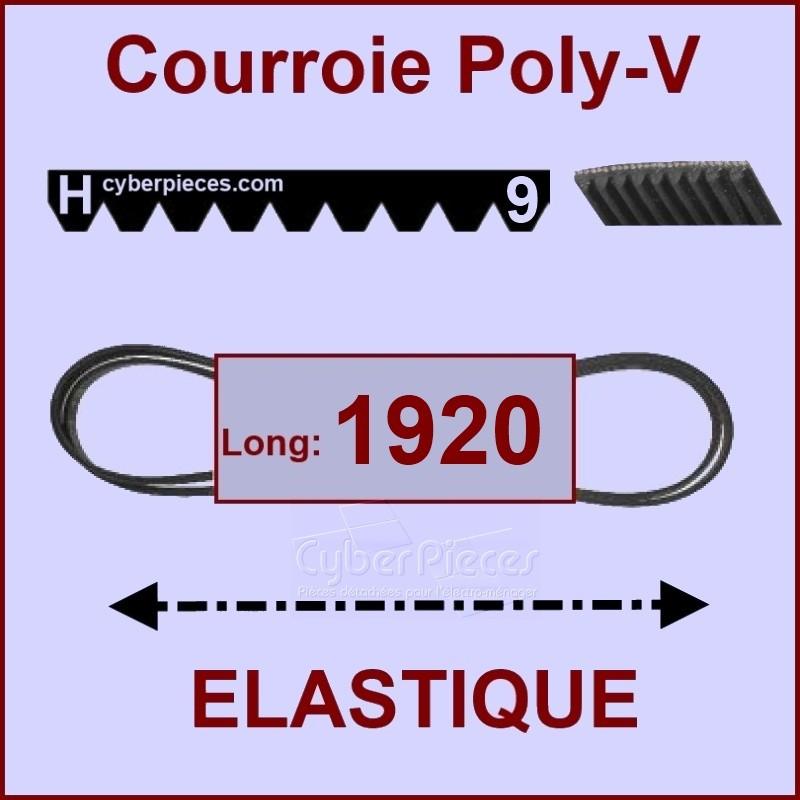 Courroie 1920H9 - EL- élastique
