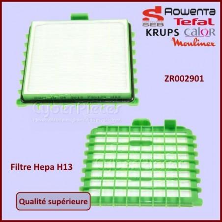 Filtre Hepa H13 Rowenta RS-RT3335