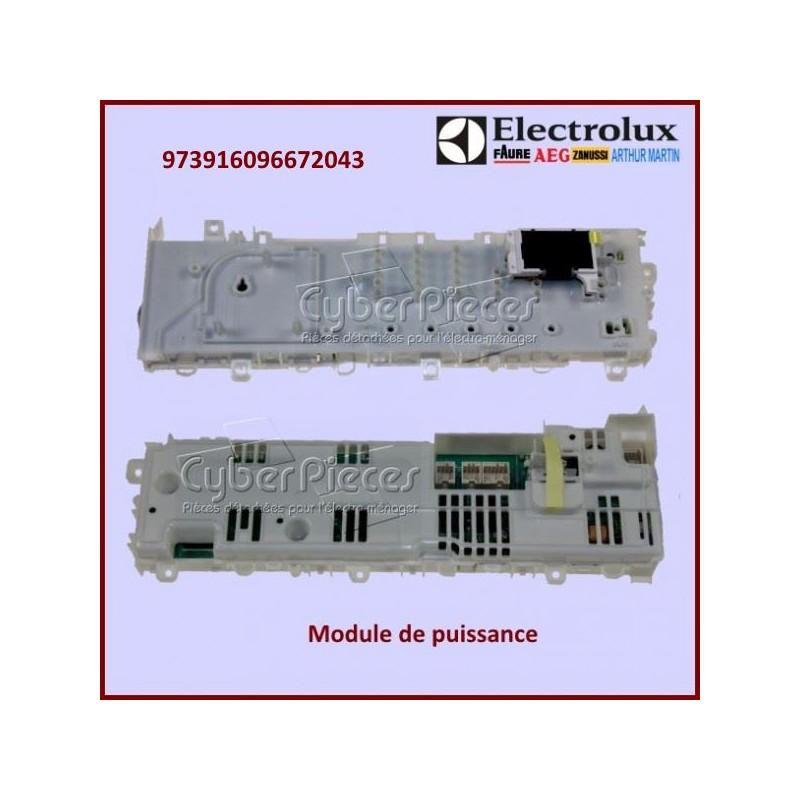 Module configuré Electrolux 973916096672043