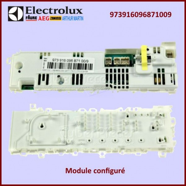 Module de puissance configuré 973916096871009