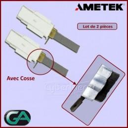 Charbon avec support AMETEK CYB-424028
