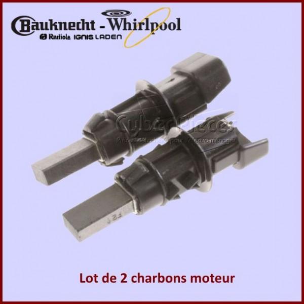 Charbon moteur avec support 24x10x6,3mm