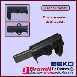 Charbon moteur avec support 25x12,5x5mm L1-5 CYB-071383