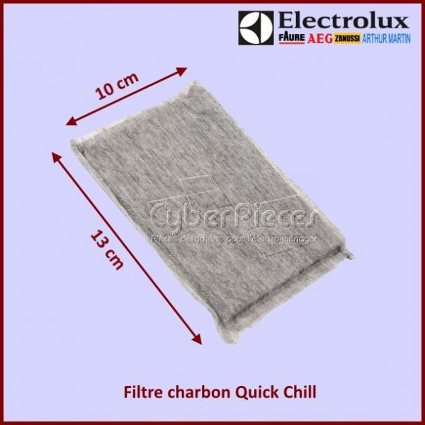Filtre à charbon QUICK CHILL Electrolux 2081625036