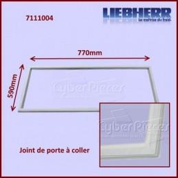 Joint De Porte 590x770mm Liebherr 7111004 CYB-095754