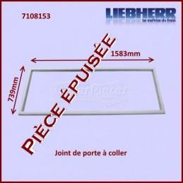 Joint De Porte 1583x739mm...