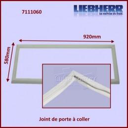 Joint de porte 580x920mm Liebherr 7111060 CYB-370462
