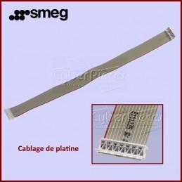 Connexions Carte électronique SMEG 820732455 CYB-422246